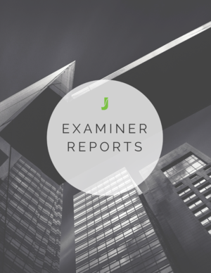 eBook-examinerReport-bwGraphic.png